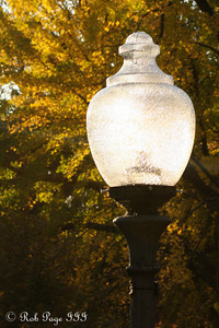 One of DC's great lamps - Washington, DC ... November 8, 2009 ... Photo by Rob Page III