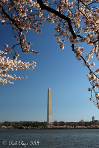 The Washington Monument - Washington, DC ... April 4, 2009 ... Photo by Rob Page III