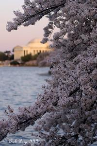 The Jefferson Memorial - Washington, DC ... April 13, 2015 ... Photo by Rob Page III