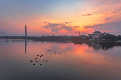 Morning Glow At The Tidal Basin