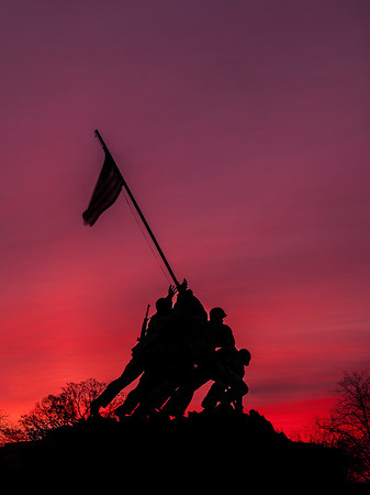Silhouette of Honor