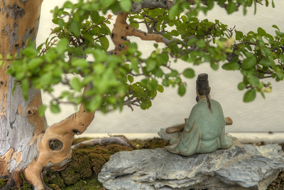 A small figurine underneath a bonsai tree at the National Bonsai and Penjing Museum at the U.S. National Aroboretum in Washington, D.C. on Tuesday, August 18, 2015. Copyright 2015 Jason Barnette