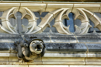 A gargoyle on the National Cathedral - Washington, DC ... April 29, 2012 ... Photo by Rob Page III