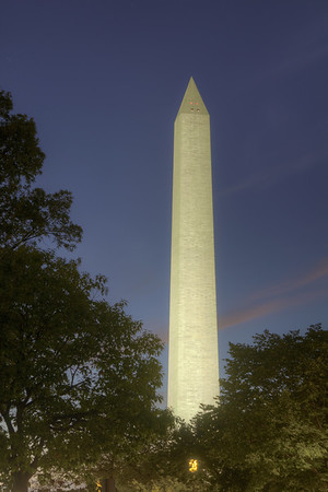The Washington Monument juts above the trees in Washington, D.C. on Saturday, August 15, 2015. Copyright 2015 Jason Barnette