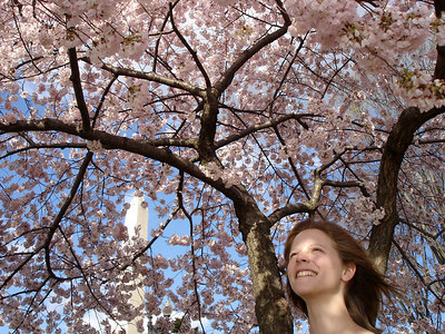 Emily and the cherryblossoms - Washington, DC ... April 1, 2006 ... Photo by Rob Page III
