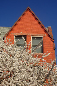 The backstreets of the Dupont Circle area - Washington, DC ... March 30, 2007 ... Photo by Rob Page III
