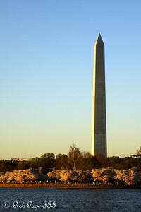 The Washington Monument along the tidal basin - Washington, DC ... April 2, 2007 ... Photo by Rob Page III