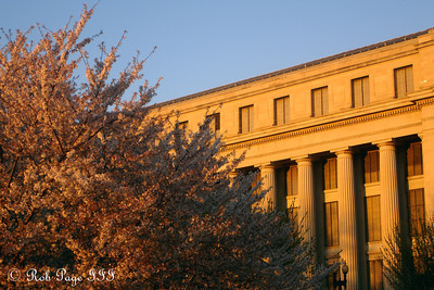 The cherry blossoms and the bureau of Engraving and Printing - Washington, DC ... April 2, 2007 ... Photo by Rob Page III