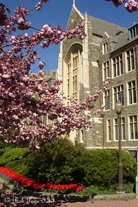 White Gravenor - Washington, DC ... April 21, 2007 ... Photo by Rob Page III