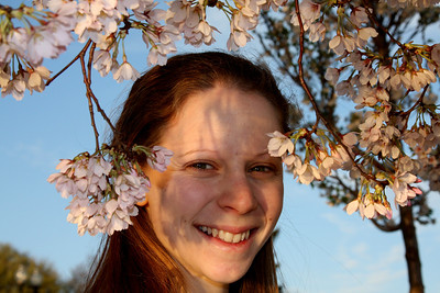 Emily and the cherry blossoms - Washington, DC ... April 2, 2008 ... Photo by Rob Page III