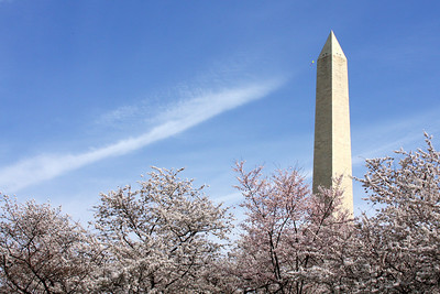 The Washington Monument - Washington, DC ... March 29, 2008 ... Photo by Rob Page III