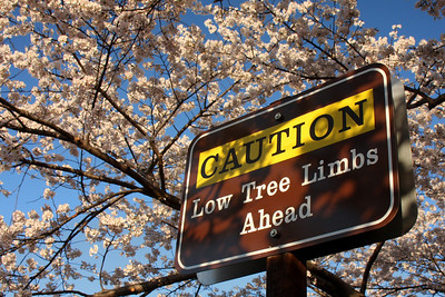 Be careful - Washington, DC ... April 4, 2009 ... Photo by Rob Page III