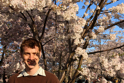 Rob and the cherryblossoms - Washington, DC ... April 4, 2009 ... Photo by Emily Page