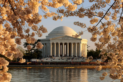 The Jefferson Memorial and cherryblossoms - Washington, DC ... April 1, 2010 ... Photo by Rob Page III