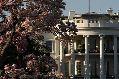 The White House - Washington, DC ... April 1, 2010 ... Photo by Rob Page III