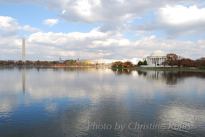 Tidal Basin. Washington, D.C. Photo by Christine Ruffo All rights reserved