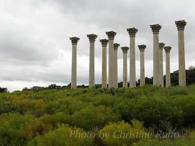 Capitol Columns, National Arboretum Washington, D.C. Photo by Christine Ruffo All rights reserved