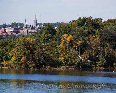 Georgetown University Photo by Christine Ruffo All rights reserved
