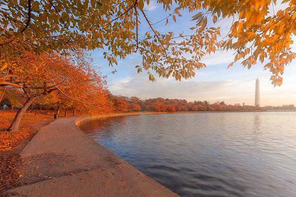 Fall Color at the Tidal Basin