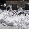 Apparently people don't ride bicycles in the snow ... no sporting blood in DC!