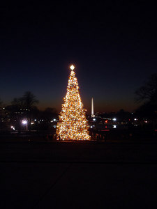 A Christmas Tree and the city - Washington, DC ... December 10, 2005 ... Photo by Rob Page III