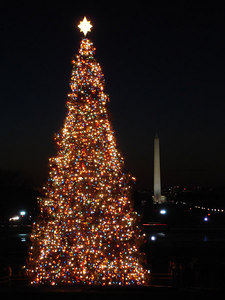 The Washignton Monument and Christmas Tree - Washington, DC ... December 10, 2005 ... Photo by Rob Page III