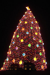 The National Christmas Tree - Washington, DC ... December 28, 2006 ... Photo by Rob Page III