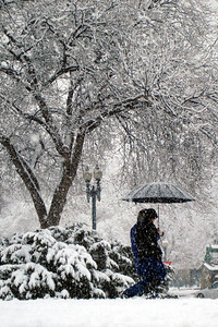 Enjoying the snowfall - Washington, DC ... February 24, 2007 ... Photo by Emily Conger