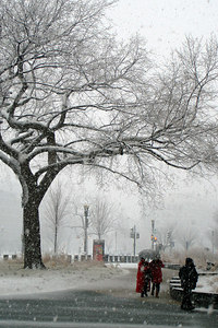 A snowy day in the nation's capitol - Washington, DC ... February 24, 2007 ... Photo by Rob Page III
