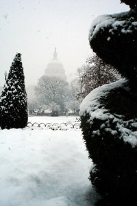 A snowy day in the capital - Washington, DC ... February 24, 2007 ... Photo by Rob Page III