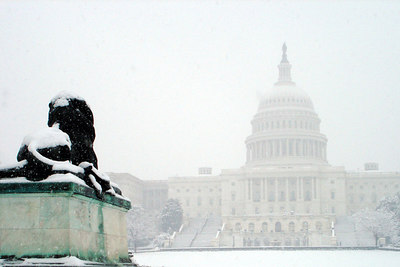 The Capitol is guarded by a lion - Washington, DC ... February 24, 2007 ... Photo by Emily Conger