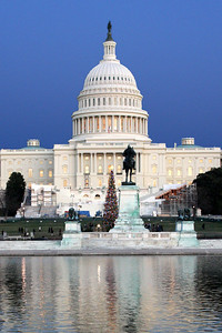 The Capitol with the National Christmas Tree in front - December 13, 2008 ... Photo by Rob Page III