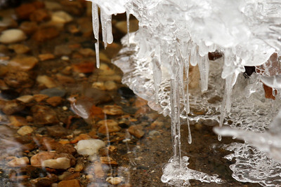 Icicles - Washington, DC ... January 18, 2009 ... Photo by Rob Page III