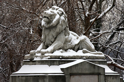 The lion at the end of Connecticut Avenue over Rock Creek - Washington, DC ... January 27, 2009 ... Photo by Rob Page III