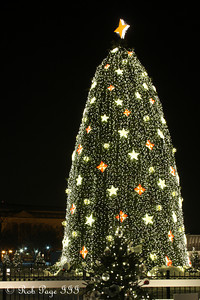 The National Christmas Tree - Washington, DC ... December 21, 2009 ... Photo by Rob Page III