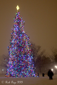 Trudging through the snow to the Capitol Christmas Tree - Washington, DC ... December 19, 2009 ... Photo by Rob Page III