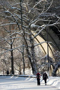 Rock Creek - Washington, DC ... December 20, 2009 ... Photo by Rob Page III