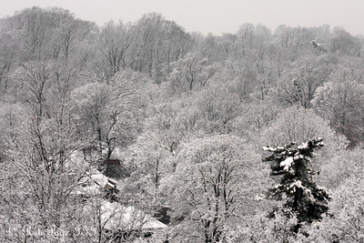 A snowy day in DC - Washington, DC ... February 3, 2010 ... Photo by Rob Page III