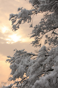 Sunrise on a snowy day - Washington, DC ... February 3, 2010 ... Photo by Rob Page III