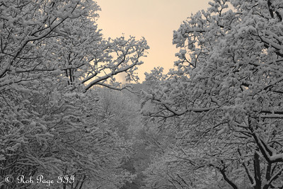 Sunrise - Washington, DC ... February 3, 2010 ... Photo by Rob Page III