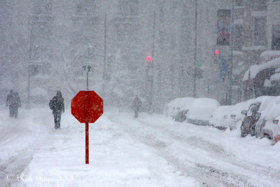 The snow comes down in Mt. Pleasant - Washington, DC ... December 19, 2009 ... Photo by Rob Page III