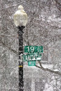 The snow falls heavily - Washington, DC ... December 19, 2009 ... Photo by Rob Page III