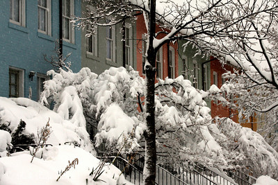 A snowy day in Georgetown - Washington, DC ... February 6, 2010 ... Photo by Rob Page III