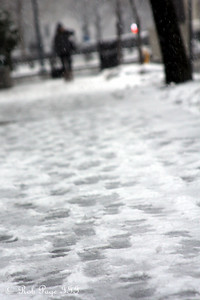 The footprints were quickly covered - Washington, DC ... February 5, 2010 ... Photo by Rob page III