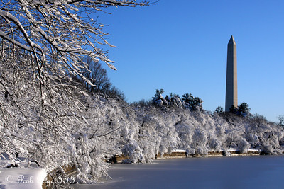 The Washington Monument rises above the Tidal Basin - Washington, DC ... February 7, 2010 ... Photo by Rob Page III
