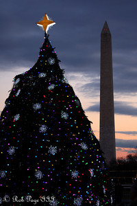The National Christmas Tree and the Washington Monument - Washington, DC ... December 31, 2011 ... Photo by Rob Page III