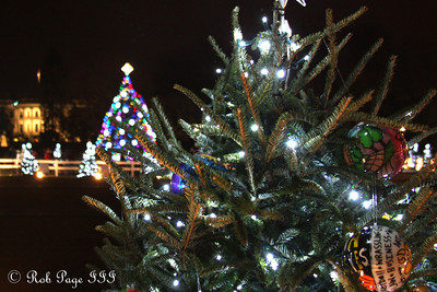 Down by the National Christmas Tree - Washington, DC ... January 1, 2012 ... Photo by Rob Page III