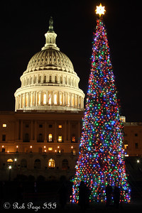 Daily Favorite for December 20, 2011  ---  The Capitol Christmas Tree - Washington, DC ... December 9, 2011 ... Photo by Rob Page III