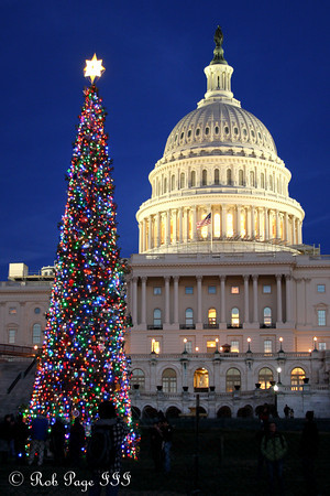 Washington Holiday Lights - 2011