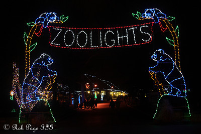 Zoo Lights - Washington, DC ... January 1, 2012 ... Photo by Rob Page III